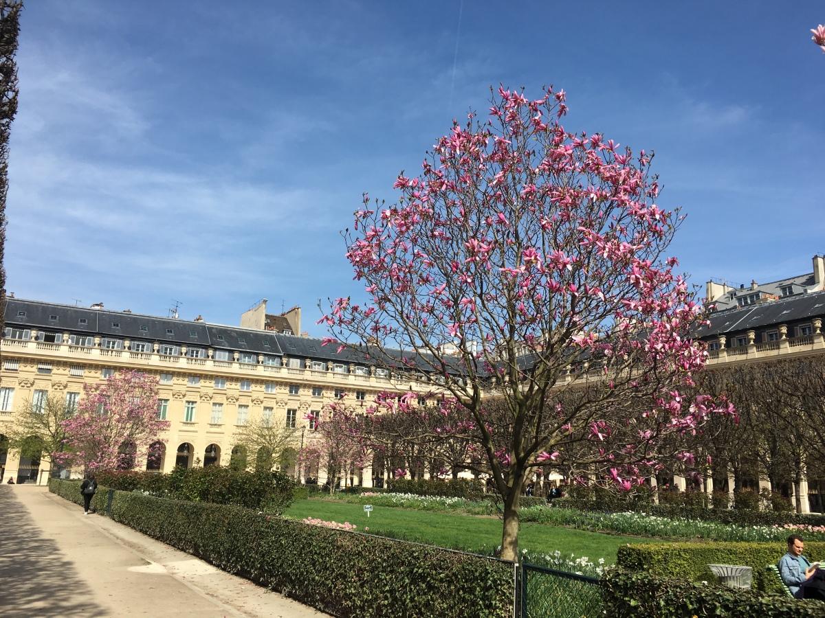 Ten Travel Tips for Paris